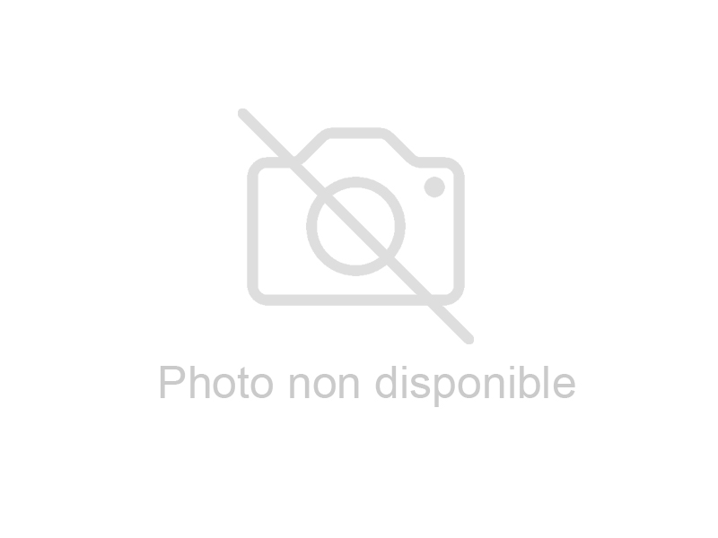 SCELLEUSE DE BARQUETTES MANUELLE AVEC OUTILLAGE 2E
